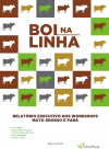 Workshop Report: Mato Grosso and Pará (in Portuguese)