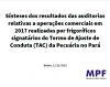 MPF's Results of Audits in 2019 - Summary (in Portuguese)