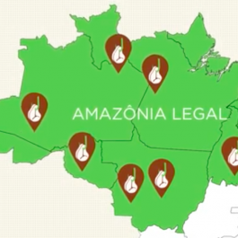 Videos show the challenges involved in monitoring the livestock chain