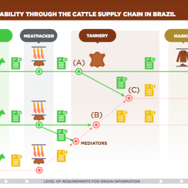 Publications offer analysis and guidelines for the leather chain